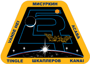 Expedition 54 Mission Decal